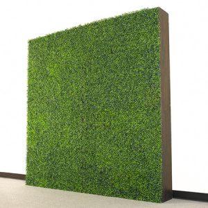 _0029_boxwood_hedge_wall